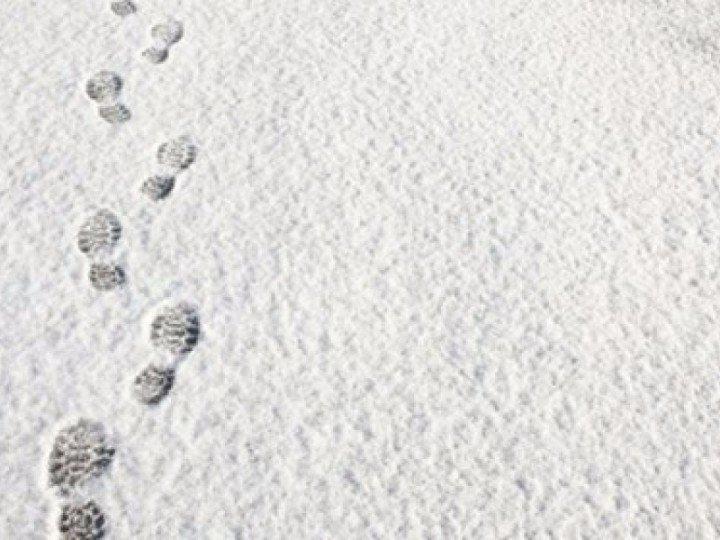 kunstgras sneeuwvrij maken